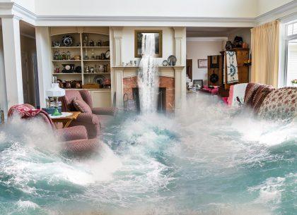 Leaking Ceilings? Wet Floors? What Should I Do?!